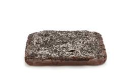 Double chocolate sponge cake